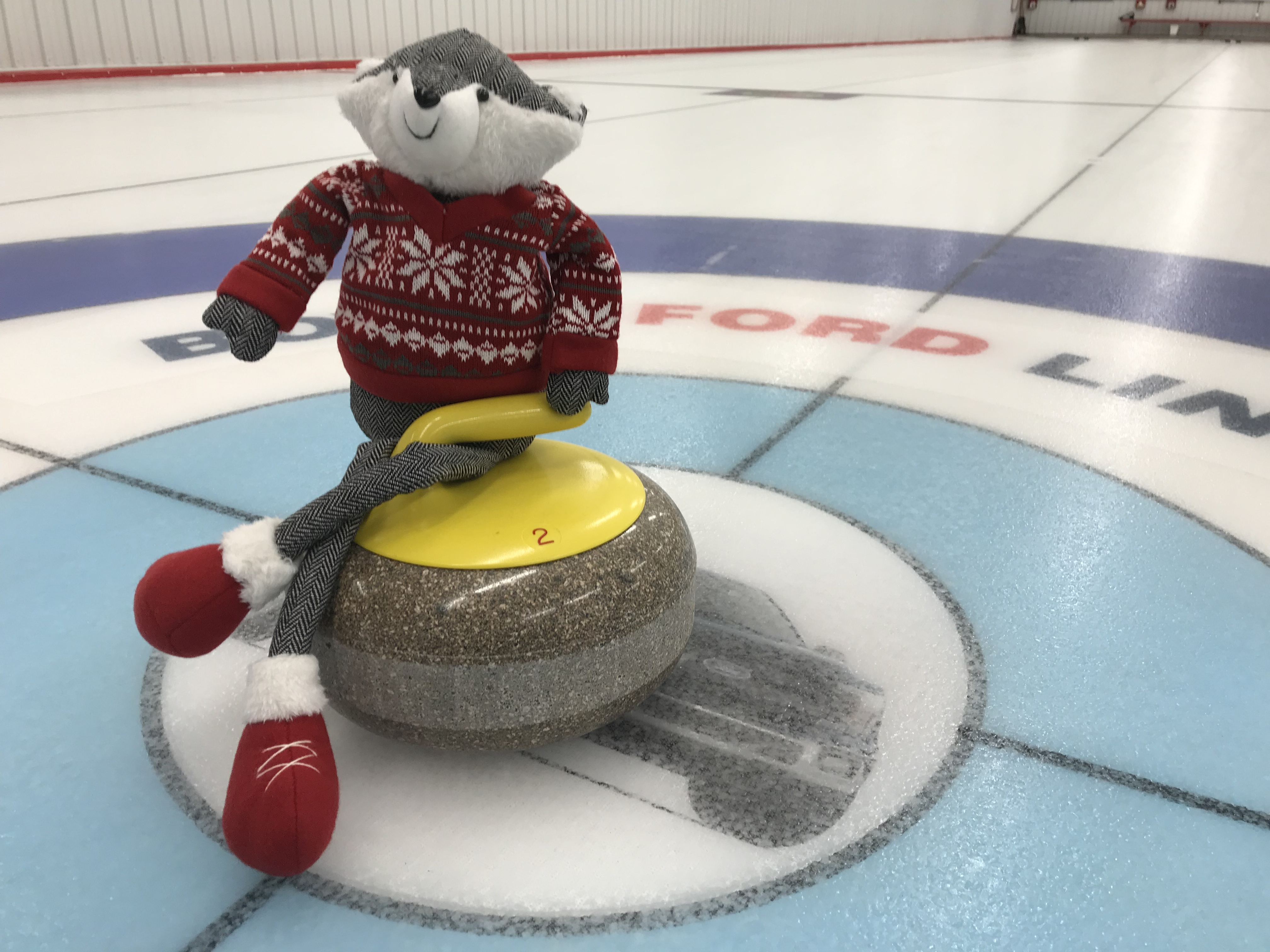 Curling_Badger